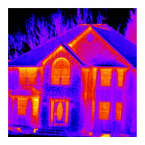Flir Thermography For Home Inspectors